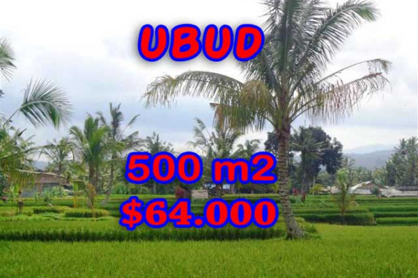 Land in Bali for sale, Great view in Ubud Bali – 500 m2 @ $ 128