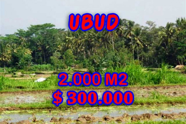 Astounding Property in Bali, Land in Ubud Bali for sale – 2.000 m2 @ $ 150