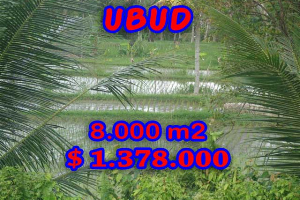Land in Bali for sale, Great view in Ubud Bali – 8.000 m2 @ $ 172