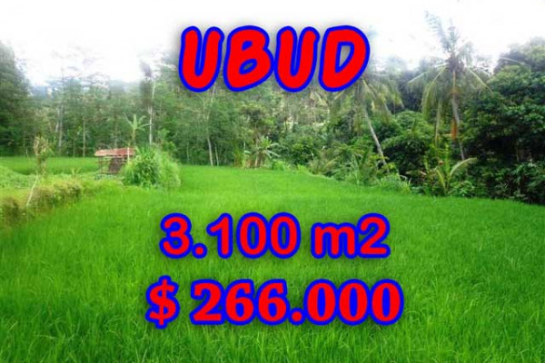 Astounding Property in Bali, Land in Ubud Bali for sale – 3,100 m2 @ $ 86