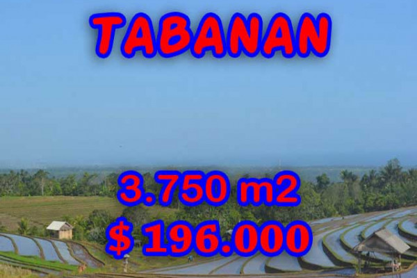 Astounding Property in Bali, Land in Tabanan Bali for sale – 3.750 m2 @ $ 39
