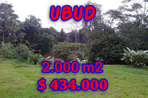 Land for sale in Bali, Outstanding view in Ubud Bali – 2,000 m2 @ $ 217