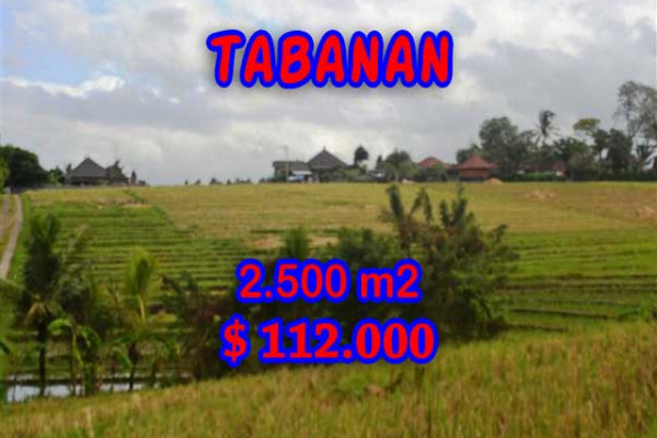 Gorgeous Property in Bali, Land for sale in Tabanan Bali – 2,500 m2 @ $ 44