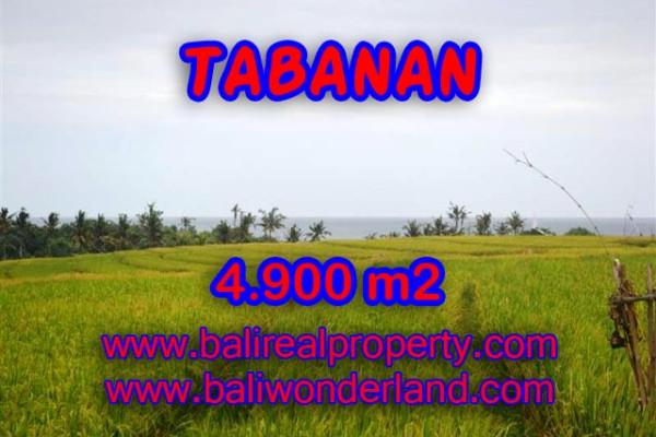 Land for sale in Tabanan Bali, Attractive view in TABANAN KERAMBITAN Bali – TJTB068