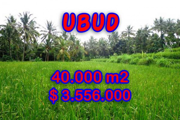 Gorgeous Property in Bali, Land for sale in Ubud Bali – 40.000 m2 @ $ 89