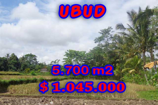 Land for sale in Bali, Interesting view in Ubud Bali – 5.700 m2 @ $ 183