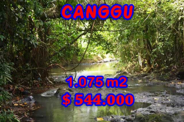 Land for sale in Bali, Magnificent view in Canggu Bali – 1,075 m2 @ $ 506