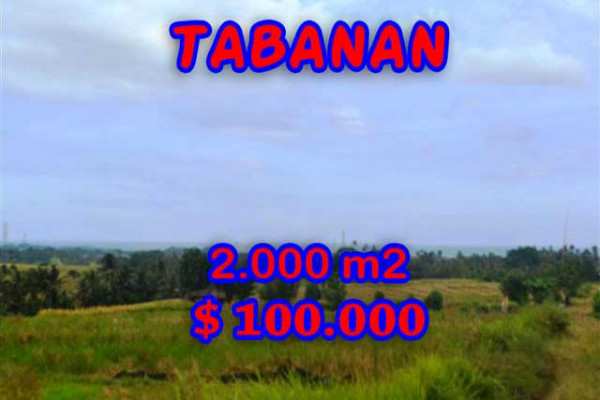 Exceptional Property in Bali, Land in Tabanan Bali for sale – 2.000 m2 @ $ 50
