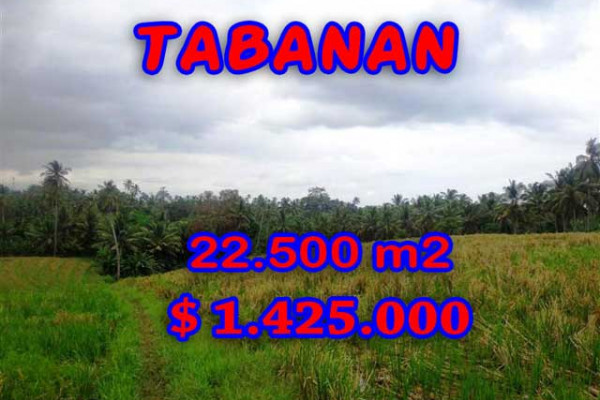 Land for sale in Bali, Interesting view in Tabanan Bali – 22.500 m2 @ $ 39