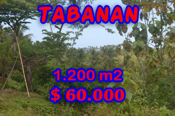 Amazing Property in Bali, Land for sale in Tabanan Bali – 1.200 m2 @ $ 39