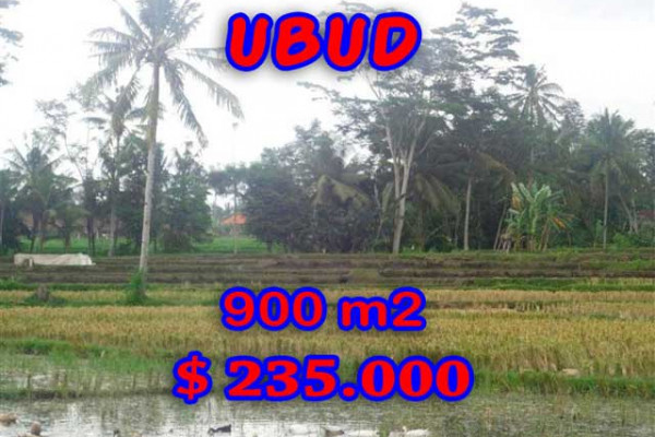 Land for sale in Bali, Magnificent view in Ubud Bali – 900 m2 @ $ 261