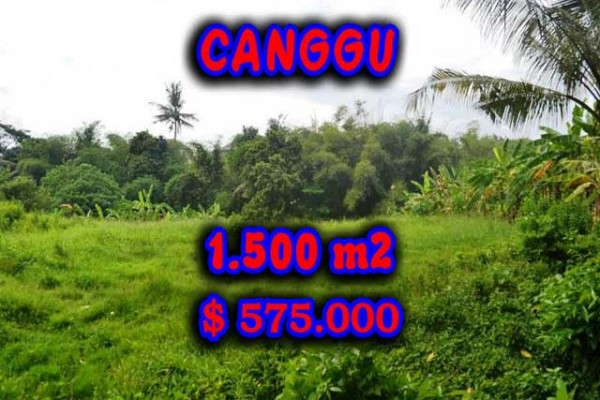 Exotic Property for sale in Bali, Land in Canggu for sale– 1.500 m2 @ $ 383