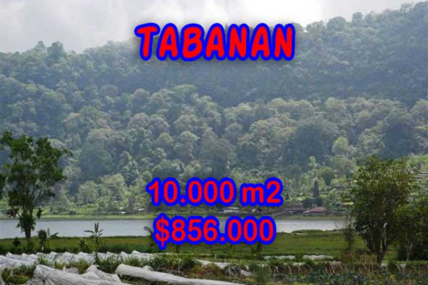 Extraordinary Property in Bali, Land for sale in Tabanan Bali – 10.000 m2 @ $ 86