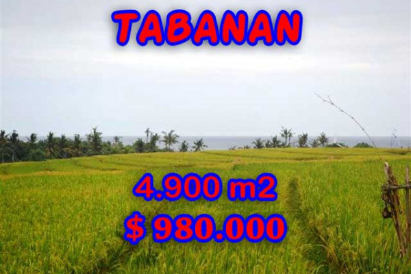 Land for sale in Bali, Outstanding view in Tabanan Bali – 4.900 m2 @ $ 39