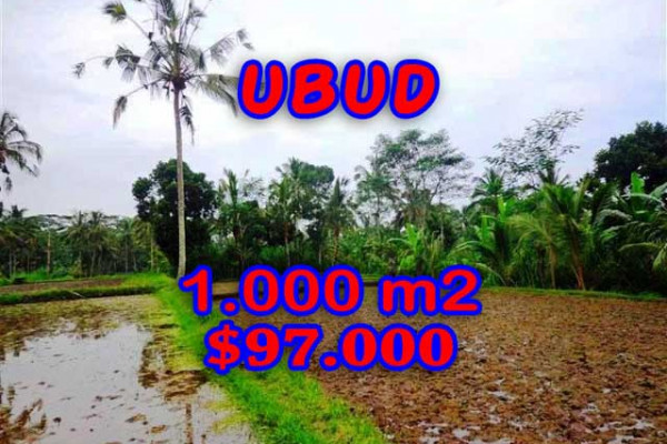 Land in Bali for sale, Stunning Property in Ubud Bali – 1.000 m2 @ $ 97