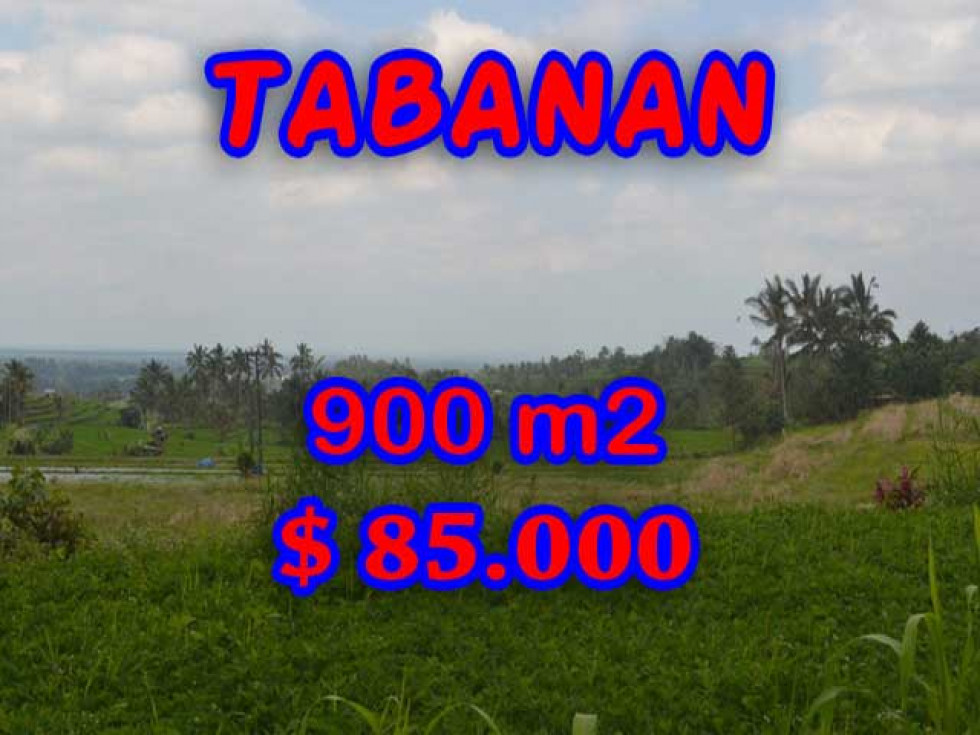 Exceptional Property in Bali, Land in Tabanan Bali for sale – 900 m2 @ $ 39