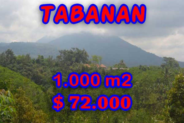 Exotic Property for sale in Bali, Land in Tabanan for sale– 1.000 m2 @ $ 39