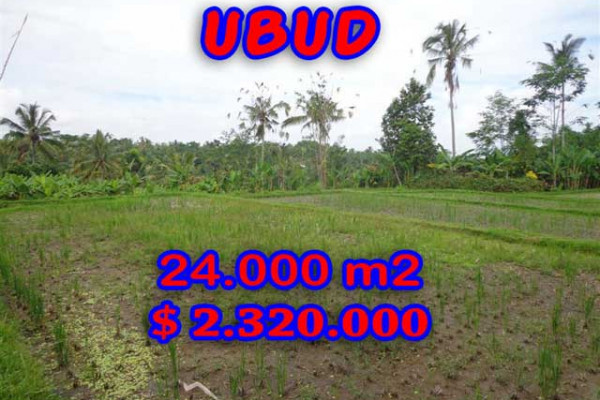 Land in Bali for sale, Stunning Property in Ubud Bali – 24.000 m2 @ $ 97