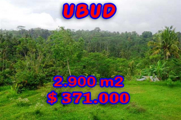 Extraordinary Property in Bali, Land for sale in Ubud Bali – 2,900 m2 @ $ 128