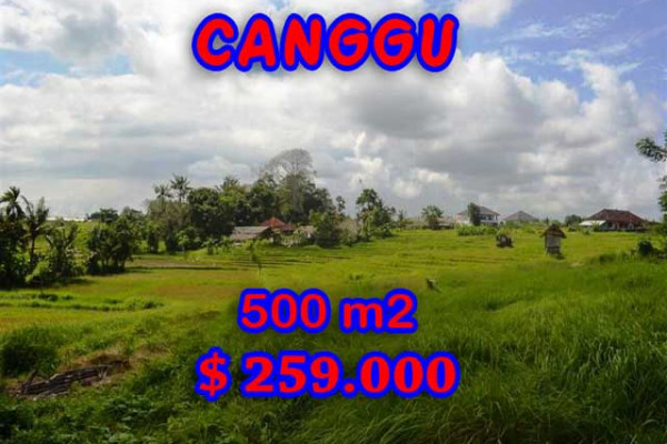 Land for sale in Bali, Exceptional view in Canggu Bali – 500 m2 @ $ 517