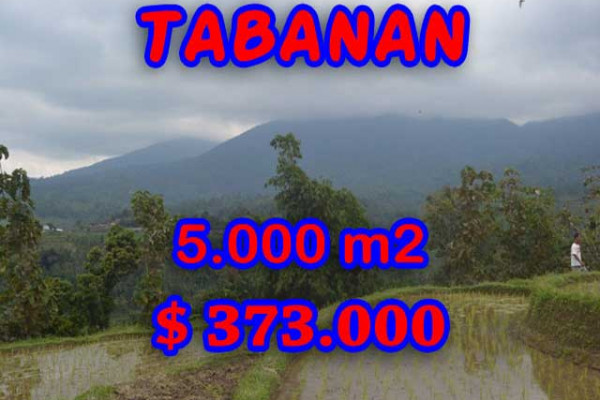 Extraordinary Property in Bali, Land for sale in Tabanan Bali – 5.000 m2 @ $ 39