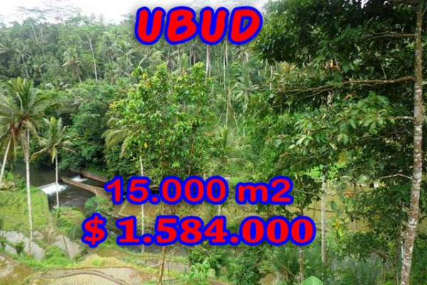 Eye-catching Property in Bali, Land sale in Ubud Bali – 15,000 m2 @ $ 106