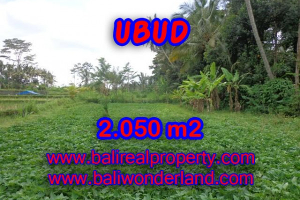 Land for sale in Bali, Outstanding property in Ubud Bali – 2.050 m2 @ $ 175
