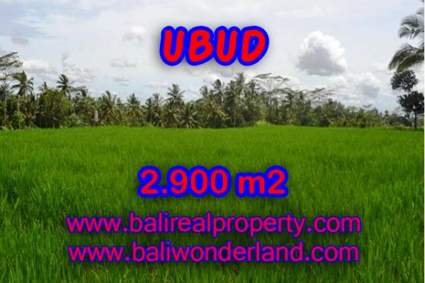 Land for sale in Bali, Spectacular view in Ubud Bali – 2.900 m2 @ $ 135