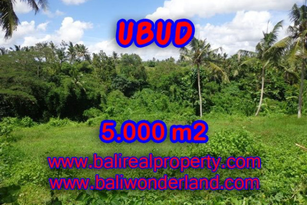 Exotic Property in Bali, Land sale in Ubud Bali – 5.000 m2 @ $ 335