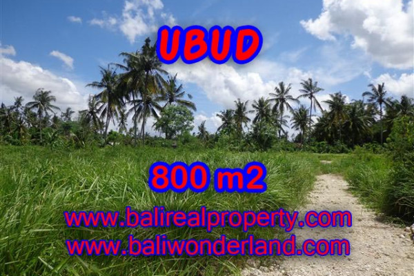 Extraordinary Property in Bali, Land for sale in Ubud Bali – 800 m2 @ $ 285