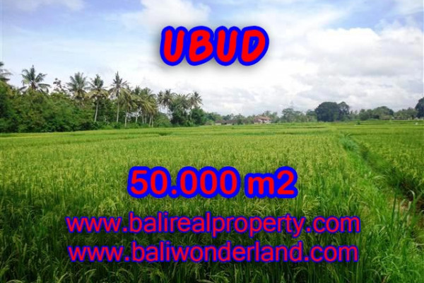 Exotic Property for sale in Bali, Land in Ubud for sale– 50.000 m2 @ $ 225
