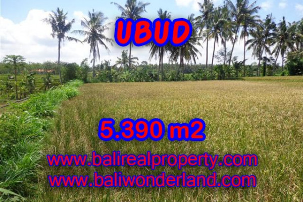 Land in Bali for sale, Stunning Property in Ubud Bali – 5.390 m2 @ $ 200