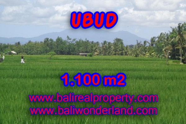Exotic Land for sale in Ubud Bali, rice field and mountain view in Central Ubud – TJUB354
