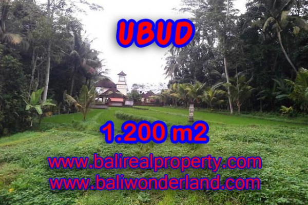 Land in Bali for sale, Great view in Ubud Bali – 1,200 m2 @ $ 206