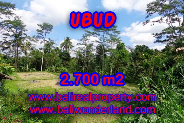 Amazing Property in Bali, Land for sale in Ubud Bali – 2.700 m2 @ $ 95