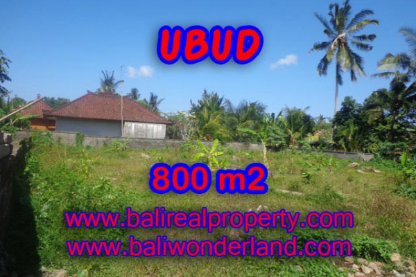 Fantastic Property in Bali, Land for sale in Ubud Bali – 800 m2 @ $ 185