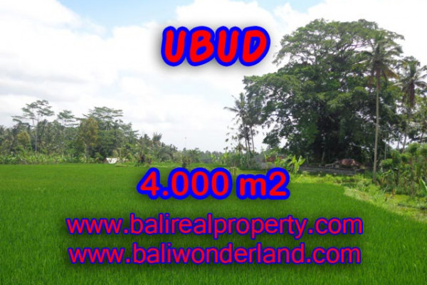 Astounding Property in Bali, Land in Ubud Bali for sale – 4.000 m2 @ $ 85