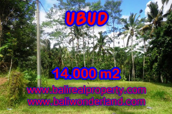 Astounding Property in Bali, Land in Ubud Bali for sale – 14.000 m2 @ $ 65