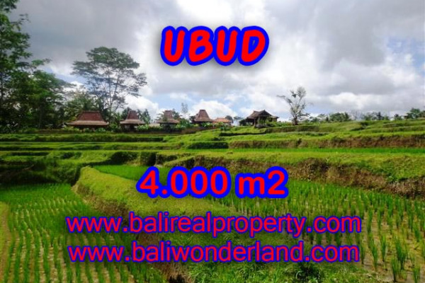 Attractive Property for sale in Bali, Ubud land for sale – 4.000 m2 @ $ 225
