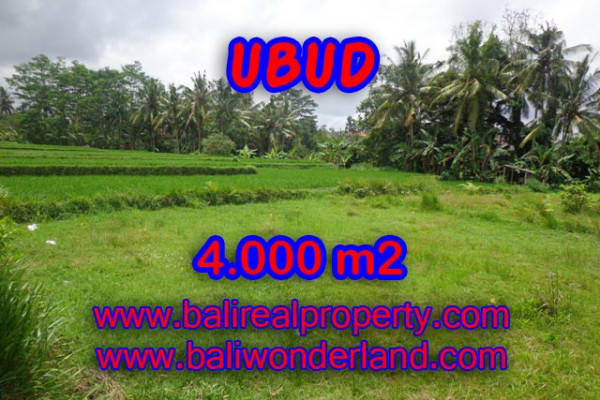 Land for sale in Bali, Interesting view in Ubud Bali – 4.000 m2 @ $ 425