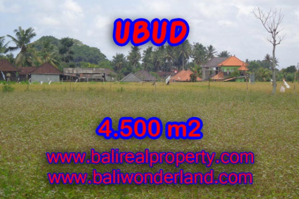Land for sale in Bali, Magnificent view in Ubud Bali – 4.500 m2 @ $ 295