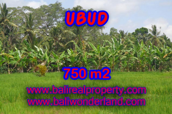 Exotic Property in Bali, Land sale in Ubud Bali – 750 m2 @ $ 215