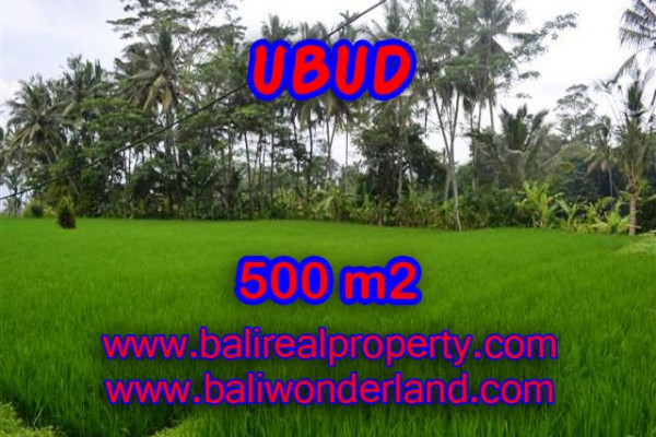 Land for sale in Bali, Exceptional view in Ubud Bali – 500 m2 @ $ 315