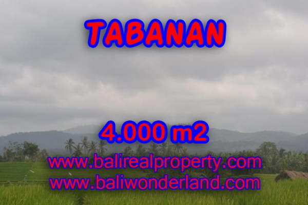 Land for sale in Tabanan Bali, Fascinating Rice fields and beach view in TABANAN BARAT Bali – TJTB084