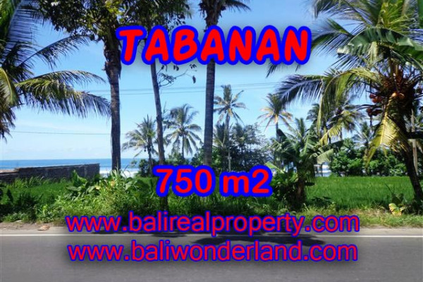 Land for sale in Bali, Magnificent view in Tabanan Bali – 750 m2 @ $ 155