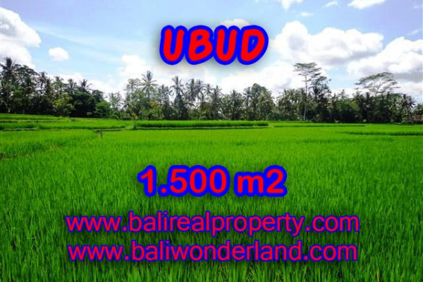 Magnificent Property in Bali, Land for sale in Ubud Bali – 1.500 m2 @ $ 375