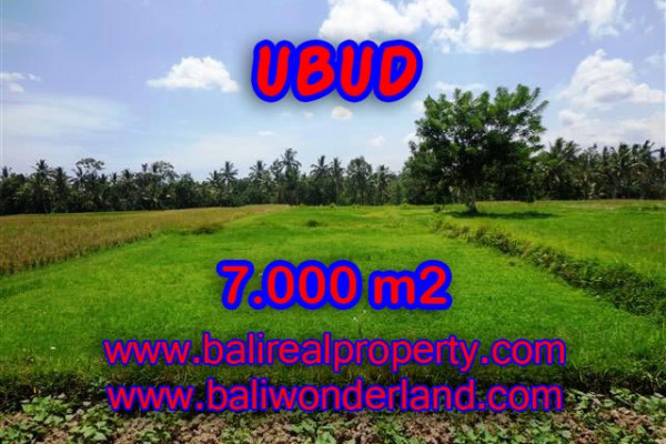Astounding Property in Bali, Land in Ubud Bali for sale – 7.000 m2 @ $ 275