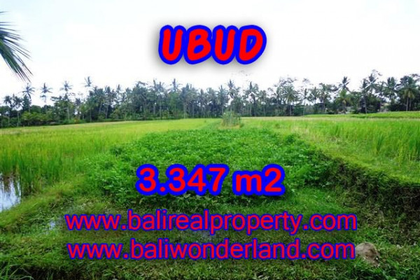 Amazing Property in Bali, LAND FOR SALE IN UBUD Bali – 3.347 m2 @ $ 285