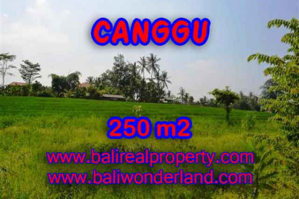 Land for sale in Bali, exceptional view in Pererenan – TJCG135