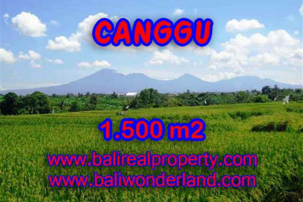 Exceptional Property in Bali, Land in Canggu Bali for sale – 1.500 m2 @ $ 465